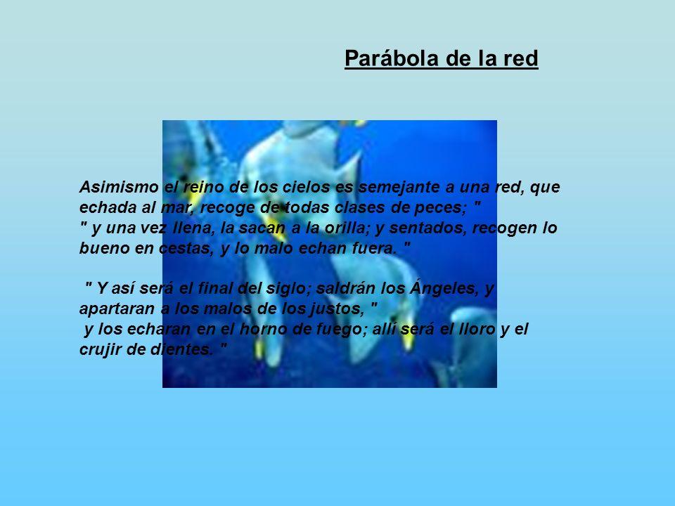 Parábola de la red Asimismo el reino de los cielos es semejante a una red, que echada al mar, recoge de todas clases de peces;