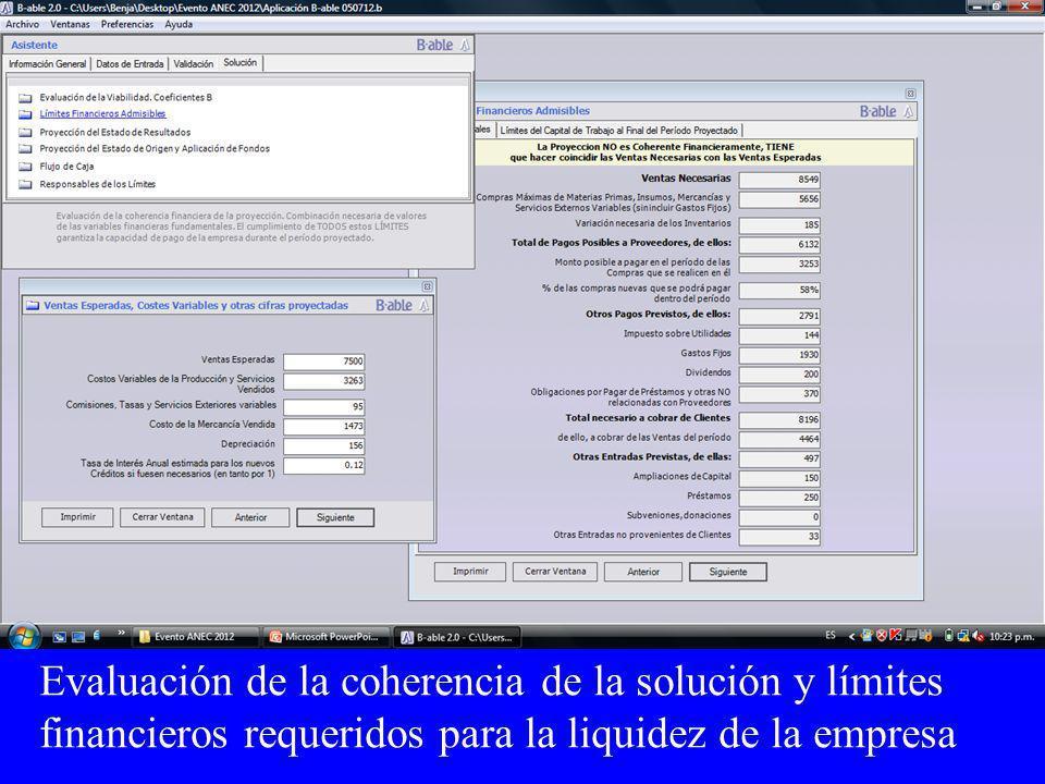 Evaluación de la coherencia de la solución y límites financieros requeridos para la liquidez de la empresa