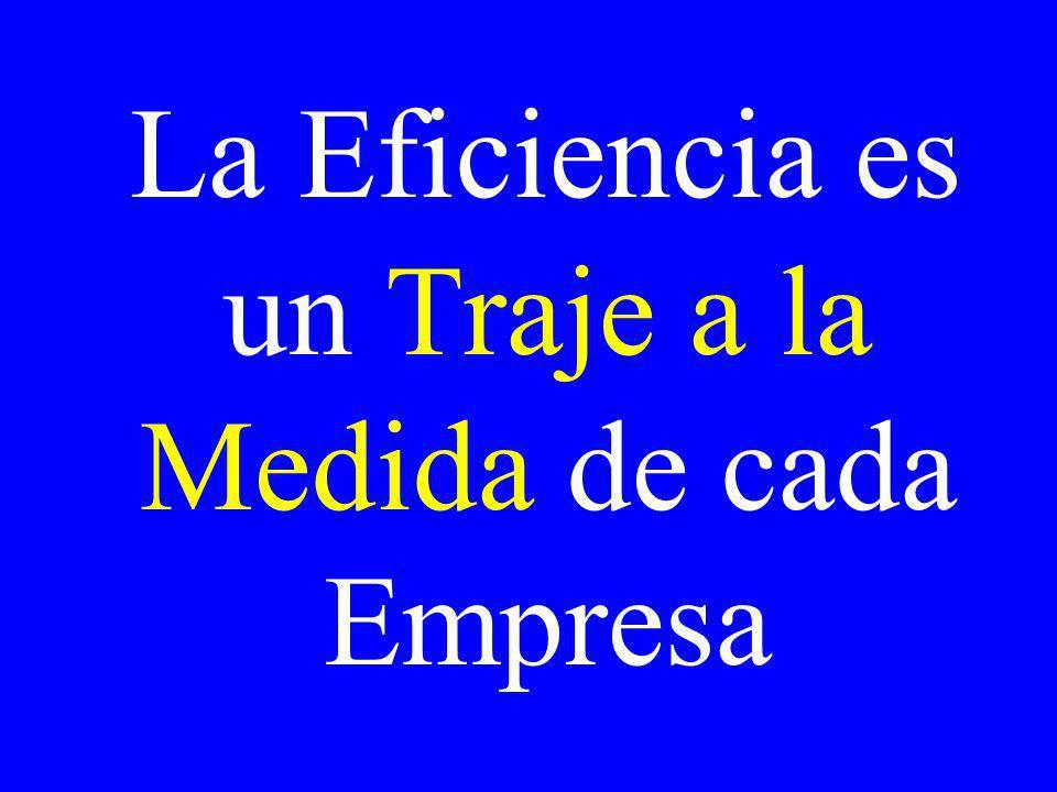La Eficiencia es un Traje a la Medida de cada Empresa