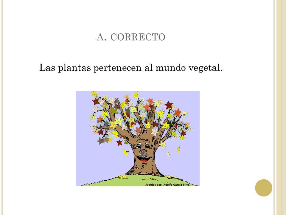 E JERCICIO 1 ¿ A qué mundo pertenecen las plantas ? A.mundo vegetal B. mundo animal C. mundo protista