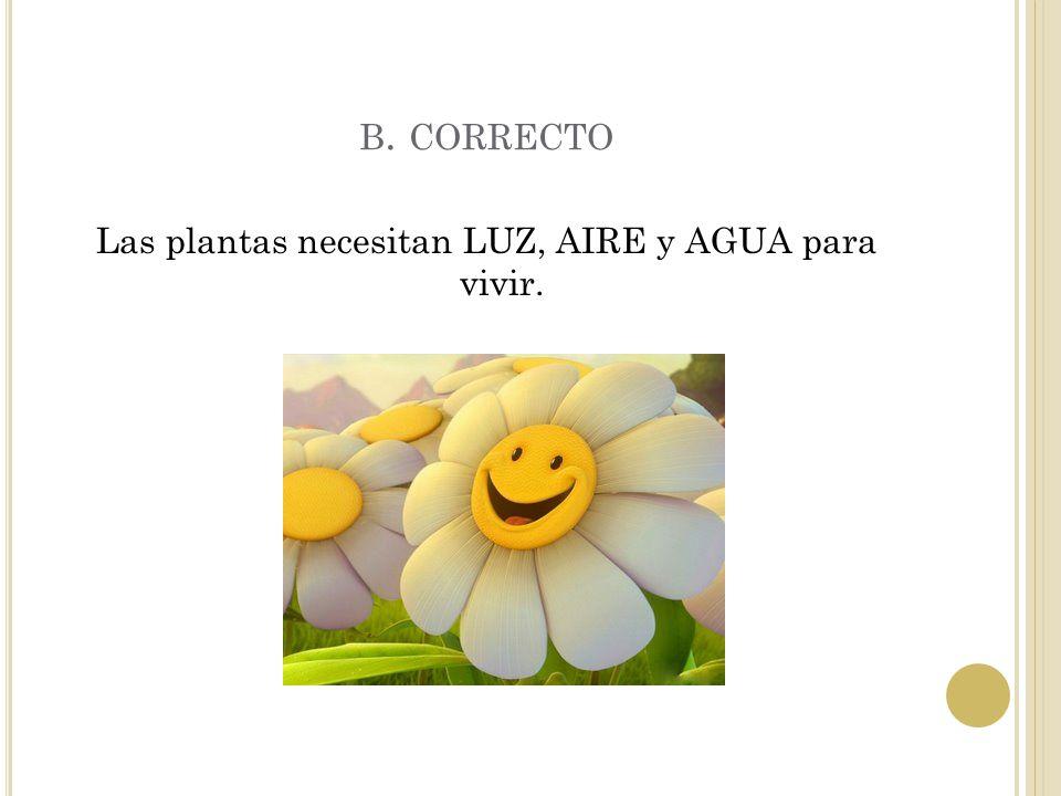 A. INCORRECTO
