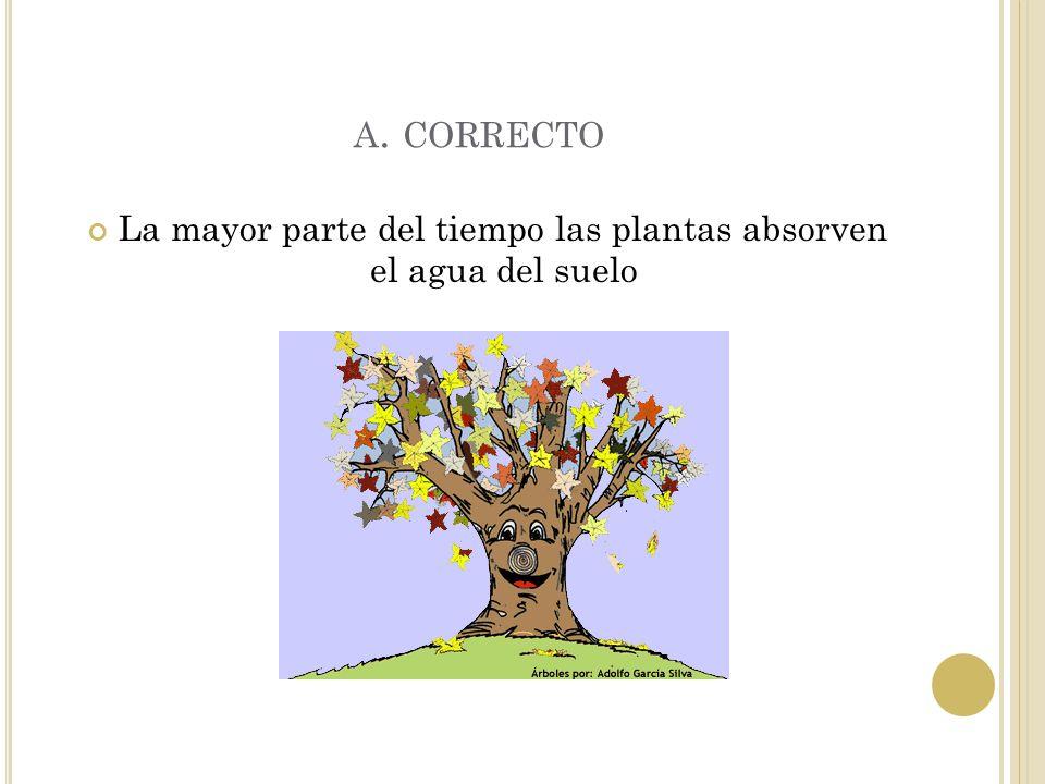 E JERCICIO 5 ¿ De qué lugar es que las plantas absorven principalmente el agua? A. suelo B. cielo C. techo