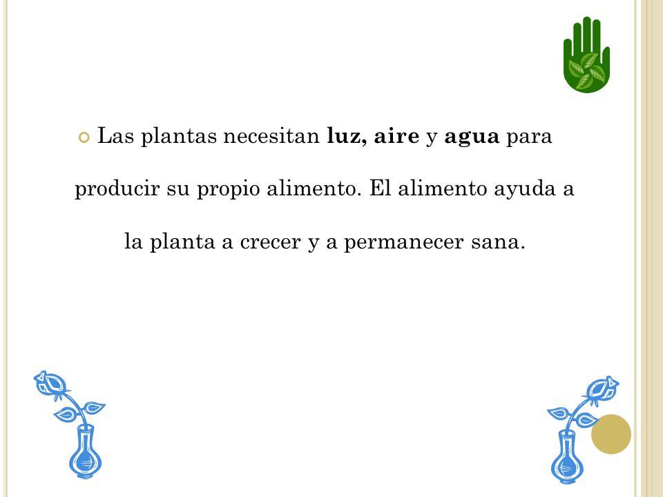 P ARTES DE LAS PLANTAS