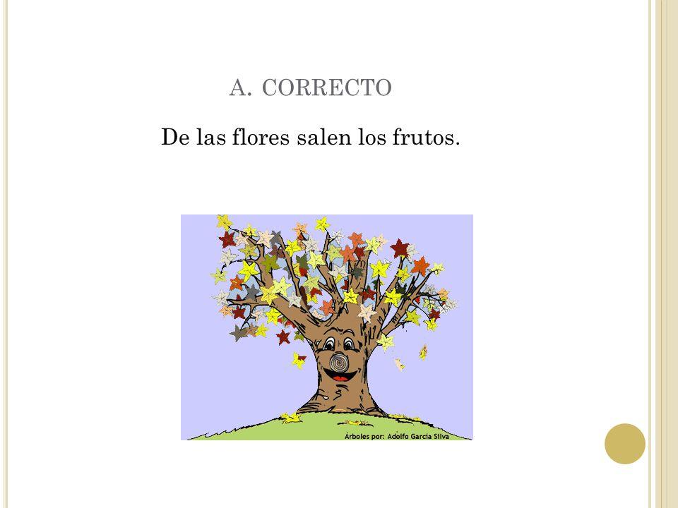 E JERCICIO 9 ¿ Qué producen las flores ? A. los frutos B. las hojas C. las semillas