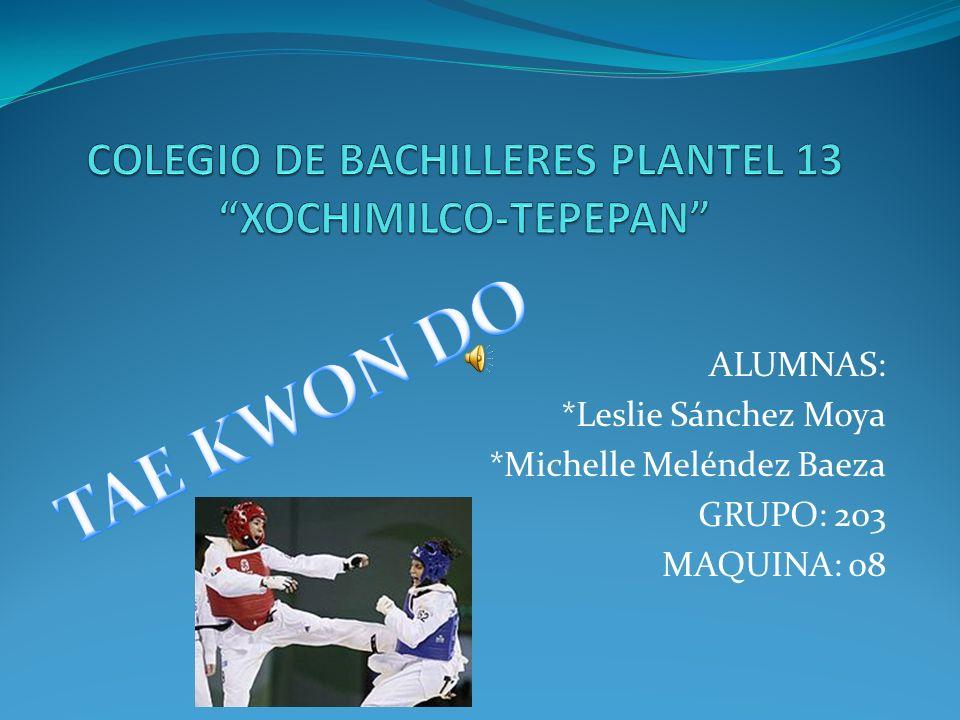 ALUMNAS: *Leslie Sánchez Moya *Michelle Meléndez Baeza GRUPO: 203 MAQUINA: 08