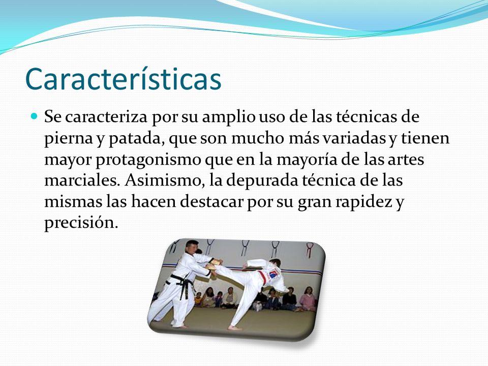 Características Se caracteriza por su amplio uso de las técnicas de pierna y patada, que son mucho más variadas y tienen mayor protagonismo que en la