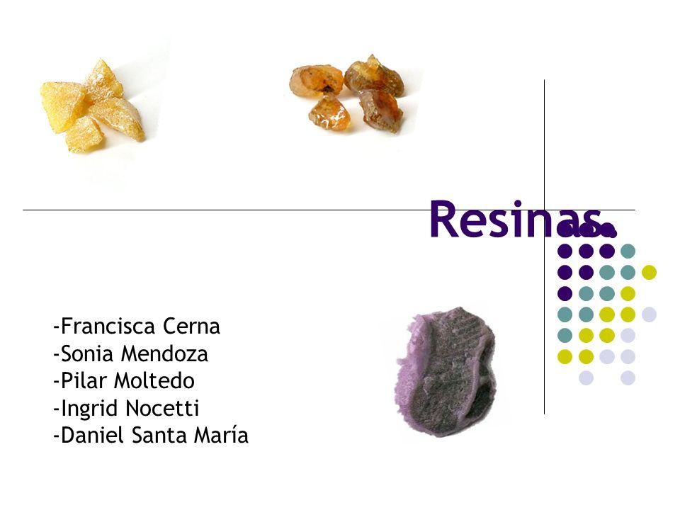Resinas. -Francisca Cerna -Sonia Mendoza -Pilar Moltedo -Ingrid Nocetti -Daniel Santa María