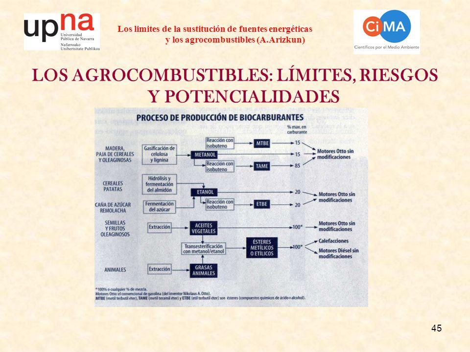 45 Los limites de la sustitución de fuentes energéticas y los agrocombustibles (A.Arizkun) LOS AGROCOMBUSTIBLES: LÍMITES, RIESGOS Y POTENCIALIDADES