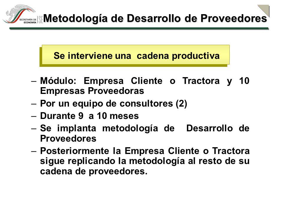 ¿Cómo se hace y dónde se interviene.1.- Encadenamientos hacia atrás (desarrollo de proveedores) 2.