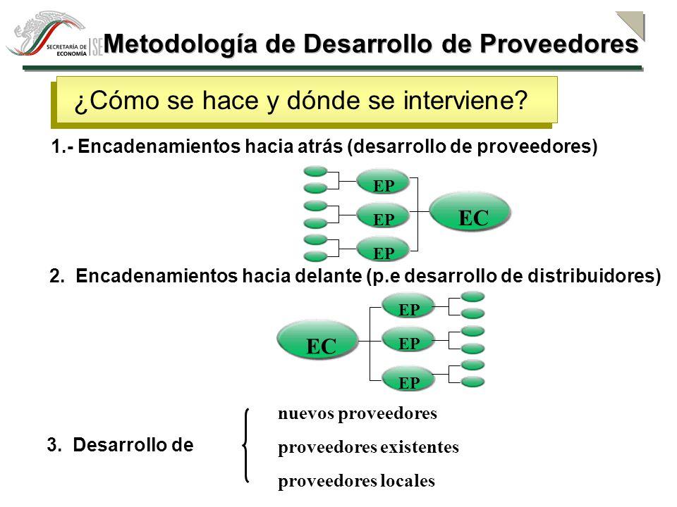 Metodología de Desarrollo de Proveedores Abastecimiento de insumos con calidad, oportunidad y precio competitivo.