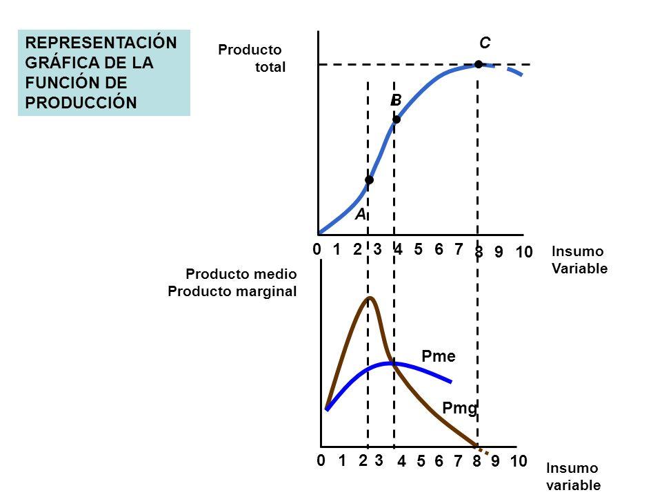 REPRESENTACIÓN GRÁFICA DE LA FUNCIÓN DE PRODUCCIÓN 0234567 8910 1 A B C 8 023 4567 9 1 Producto total Insumo Variable Producto medio Producto marginal