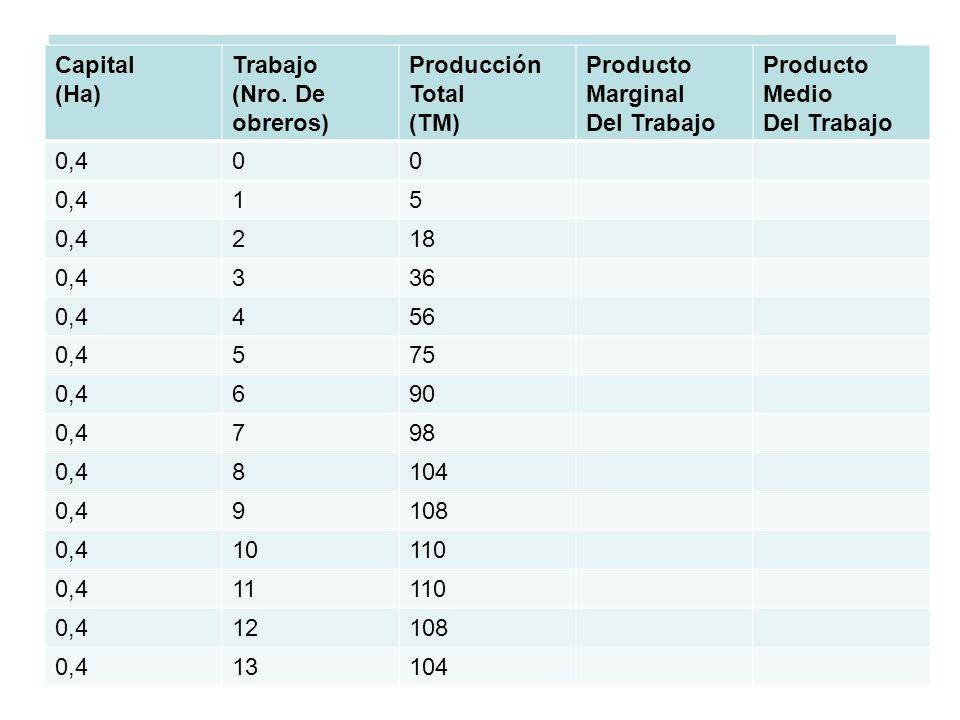 CARACTERISTICAS DE LAS CURVAS DE PT, PME, PMG Y LAS ETAPAS DE LA PRODUCCIÓN Capital (Ha) Trabajo (Nro. De obreros) Producción Total (TM) Producto Marg