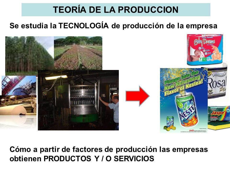 Se estudia la TECNOLOGÍA de producción de la empresa Cómo a partir de factores de producción las empresas obtienen PRODUCTOS Y / O SERVICIOS TEORÍA DE