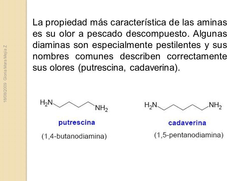La propiedad más característica de las aminas es su olor a pescado descompuesto. Algunas diaminas son especialmente pestilentes y sus nombres comunes