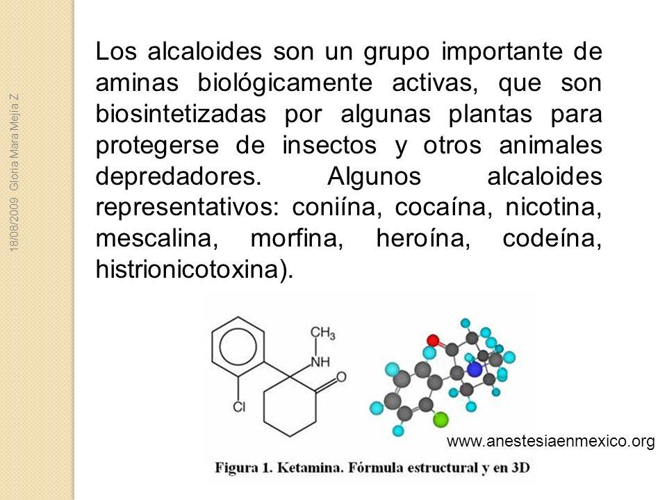 Los alcaloides son un grupo importante de aminas biológicamente activas, que son biosintetizadas por algunas plantas para protegerse de insectos y otr