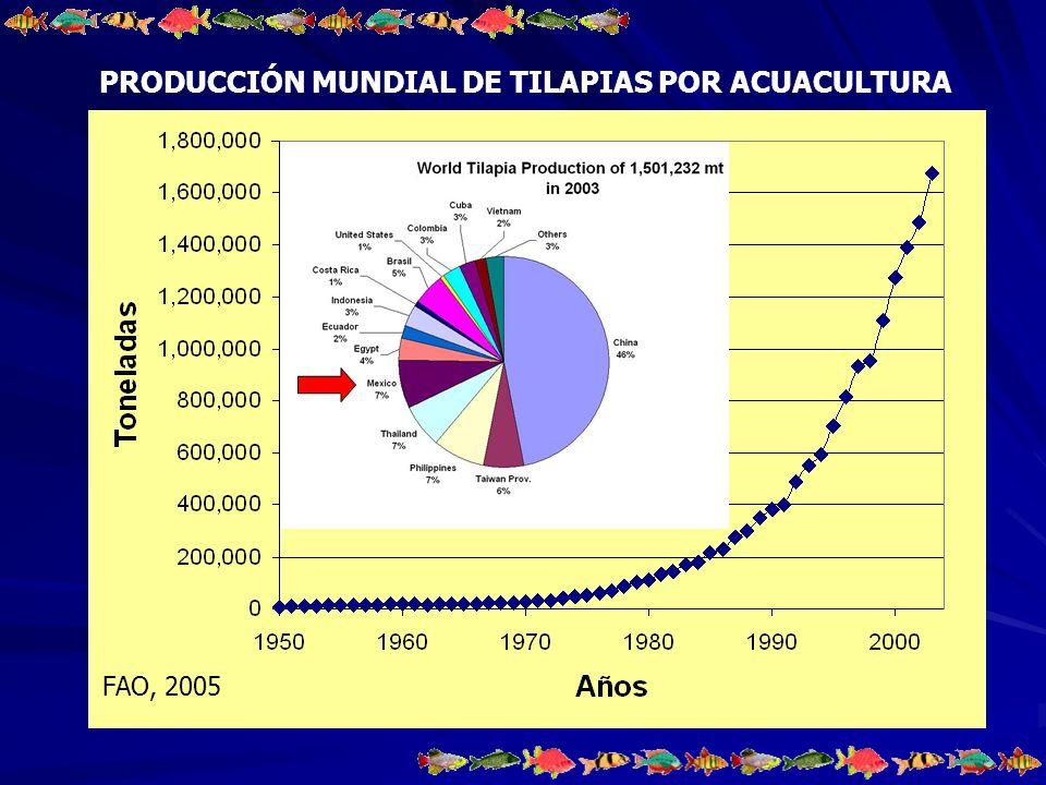 Volumen de la producción por acuacultura en peso vivo, por modalidad de cultivo según las principales especies, 2003 1´564,966 Toneladas producidas por pesquería de las cuales se produjeron 207,776 por acuacultura, representando el 13.27% México