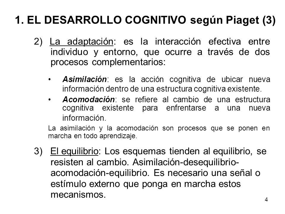3 1. EL DESARROLLO COGNITIVO según Piaget (2) Para Piaget, en el desarrollo cognitivo de las personas intervienen diversos factores: 1) Esquemas cogni