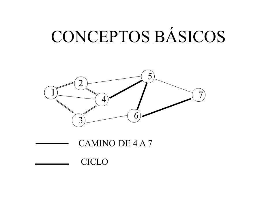 CONCEPTOS BÁSICOS 1 4 3 2 6 5 7 1 CAMINO DE 4 A 7 CICLO
