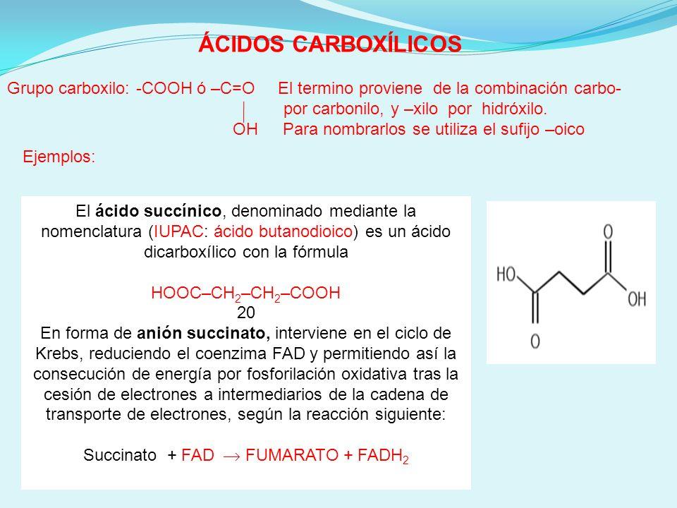 ÁCIDOS CARBOXÍLICOS Àcido Oleico Grasa monoinsaturada presente en los aceites vegetales como el aceite de oliva.