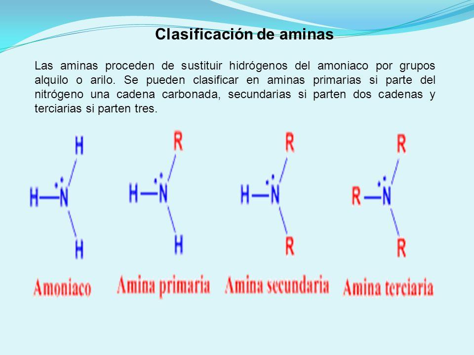 Las aminas proceden de sustituir hidrógenos del amoniaco por grupos alquilo o arilo. Se pueden clasificar en aminas primarias si parte del nitrógeno u