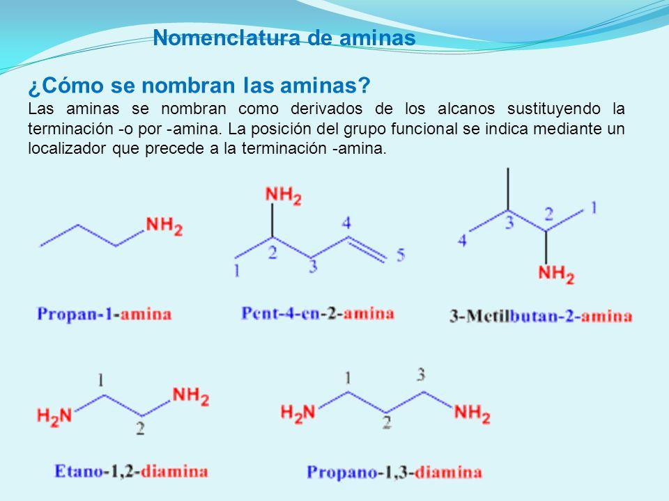 ¿Cómo se nombran las aminas? Las aminas se nombran como derivados de los alcanos sustituyendo la terminación -o por -amina. La posición del grupo func