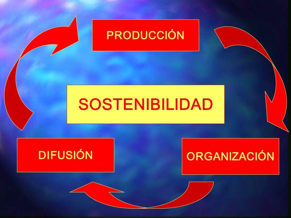 La información: recurso organizacional ?