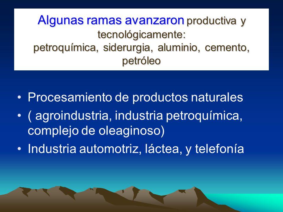 Algunas ramas avanzaron productiva y tecnológicamente: petroquímica, siderurgia, aluminio, cemento, petróleo Procesamiento de productos naturales ( ag