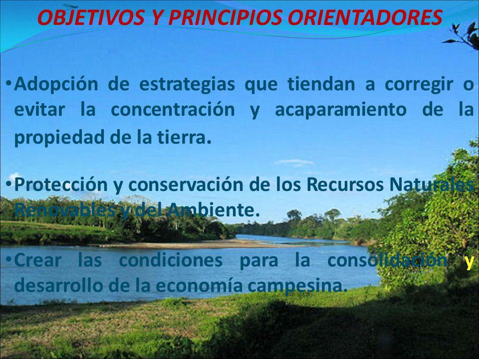 OBJETIVOS Y PRINCIPIOS ORIENTADORES Protección y conservación de los Recursos Naturales Renovables y del Ambiente. Adopción de estrategias que tiendan