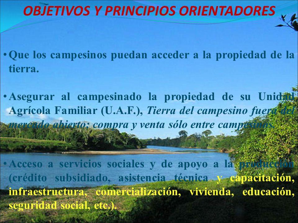 OBJETIVOS Y PRINCIPIOS ORIENTADORES Asegurar al campesinado la propiedad de su Unidad Agrícola Familiar (U.A.F.), Tierra del campesino fuera del merca