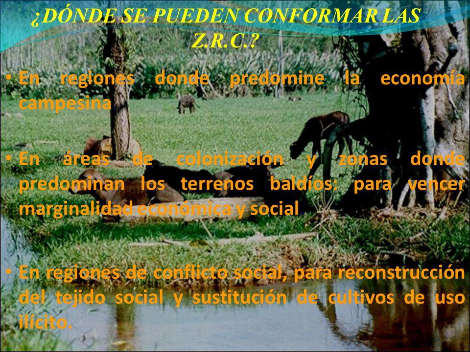 ¿DÓNDE SE PUEDEN CONFORMAR LAS Z.R.C.? En regiones de conflicto social, para reconstrucción del tejido social y sustitución de cultivos de uso ilícito