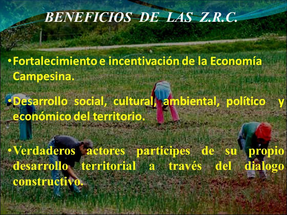 BENEFICIOS DE LAS Z.R.C. Fortalecimiento e incentivación de la Economía Campesina. Desarrollo social, cultural, ambiental, político y económico del te