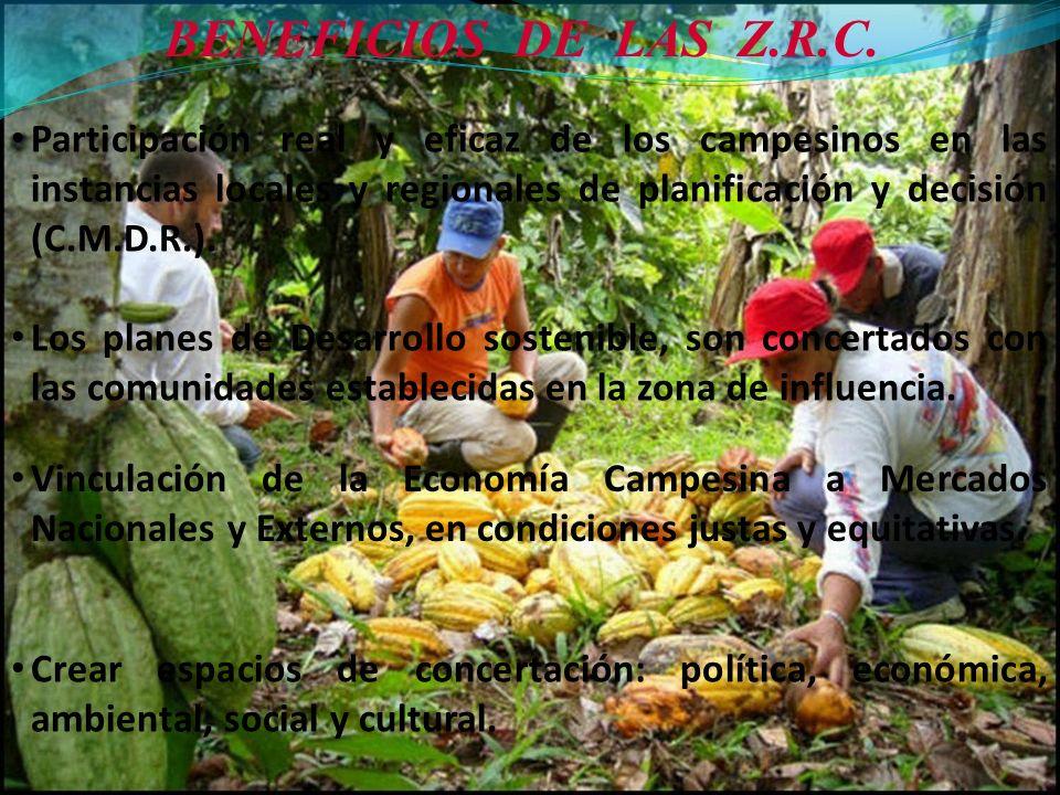BENEFICIOS DE LAS Z.R.C. Participación real y eficaz de los campesinos en las instancias locales y regionales de planificación y decisión (C.M.D.R.).