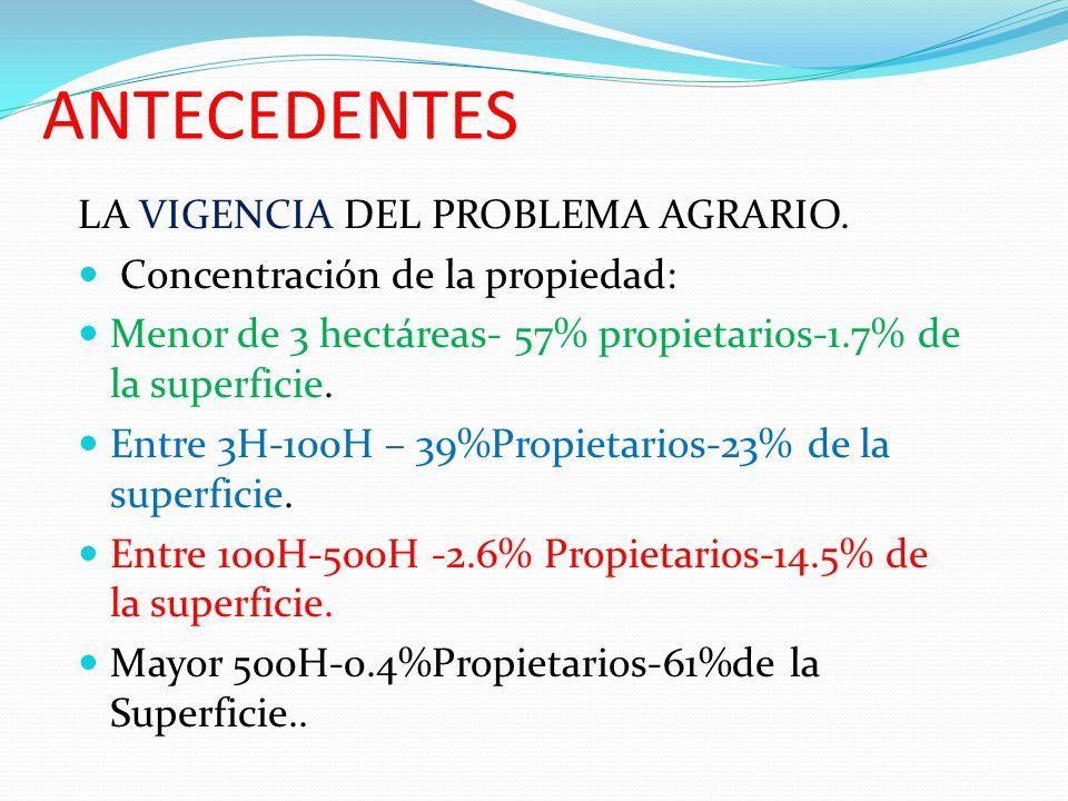 ANTECEDENTES LA VIGENCIA DEL PROBLEMA AGRARIO. Concentración de la propiedad: Menor de 3 hectáreas- 57% propietarios-1.7% de la superficie. Entre 3H-1