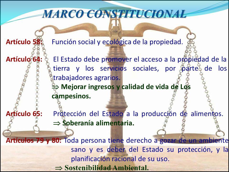 MARCO CONSTITUCIONAL Artículo 58: Función social y ecológica de la propiedad. Artículo 64:El Estado debe promover el acceso a la propiedad de la tierr
