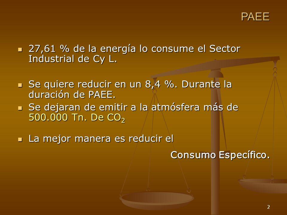 3 Mayor eficiencia PAEE Consumo Específico: Cantidad de energía/ unidad de producción