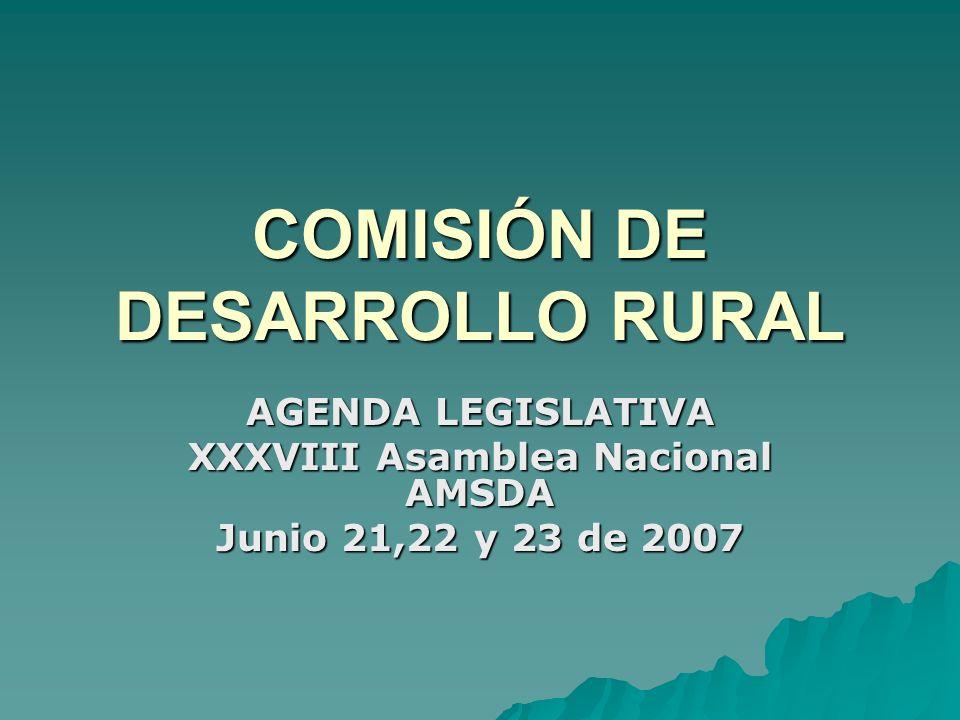 COMISIÓN DE DESARROLLO RURAL AGENDA LEGISLATIVA XXXVIII Asamblea Nacional AMSDA Junio 21,22 y 23 de 2007