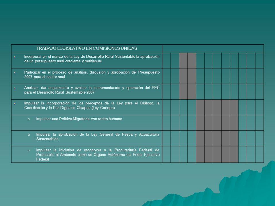 TRABAJO LEGISLATIVO EN COMISIONES UNIDAS Incorporar en el marco de la Ley de Desarrollo Rural Sustentable la aprobación de un presupuesto rural creciente y multianual Participar en el proceso de análisis, discusión y aprobación del Presupuesto 2007 para el sector rural Analizar, dar seguimiento y evaluar la instrumentación y operación del PEC para el Desarrollo Rural Sustentable 2007 Impulsar la incorporación de los preceptos de la Ley para el Diálogo, la Conciliación y la Paz Digna en Chiapas (Ley Cocopa) o Impulsar una Política Migratoria con rostro humano o Impulsar la aprobación de la Ley General de Pesca y Acuacultura Sustentables o Impulsar la iniciativa de reconocer a la Procuraduría Federal de Protección al Ambiente como un Órgano Autónomo del Poder Ejecutivo Federal