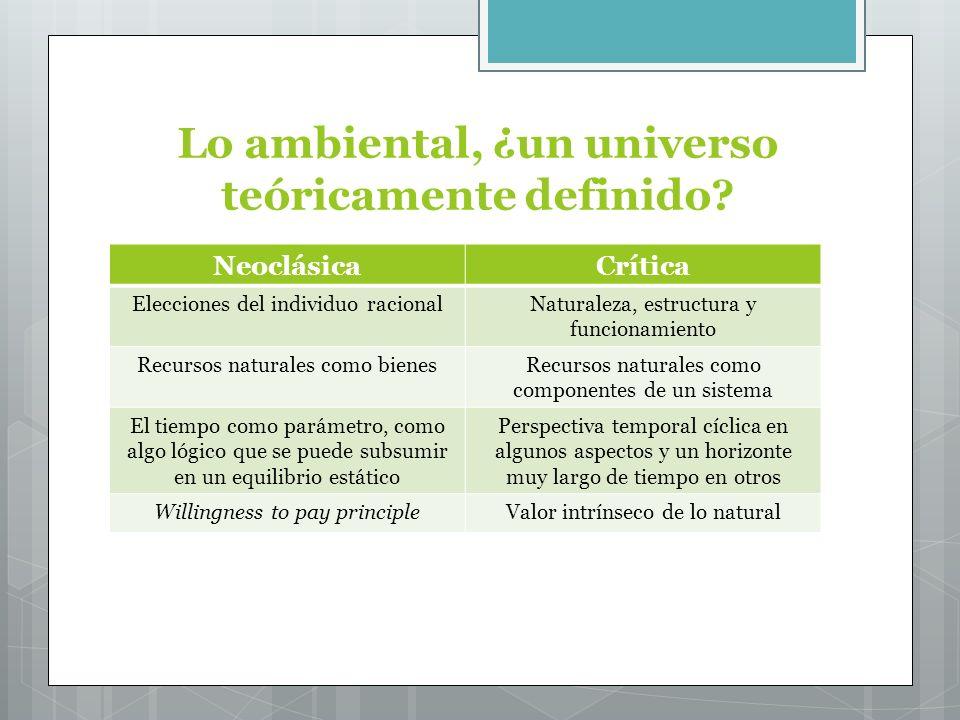 Lo ambiental, ¿un universo teóricamente definido.
