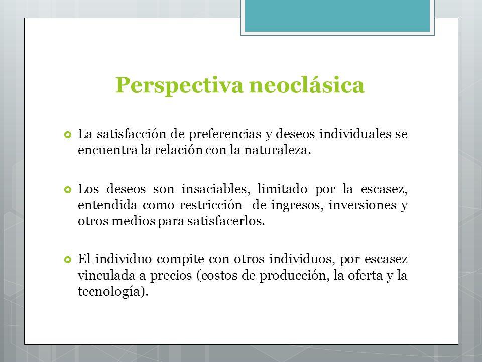 Perspectiva neoclásica La satisfacción de preferencias y deseos individuales se encuentra la relación con la naturaleza.
