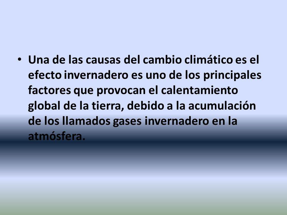 Una de las causas del cambio climático es el efecto invernadero es uno de los principales factores que provocan el calentamiento global de la tierra,