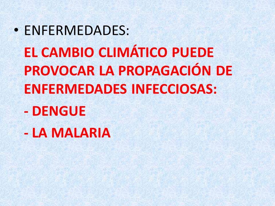ENFERMEDADES: EL CAMBIO CLIMÁTICO PUEDE PROVOCAR LA PROPAGACIÓN DE ENFERMEDADES INFECCIOSAS: - DENGUE - LA MALARIA