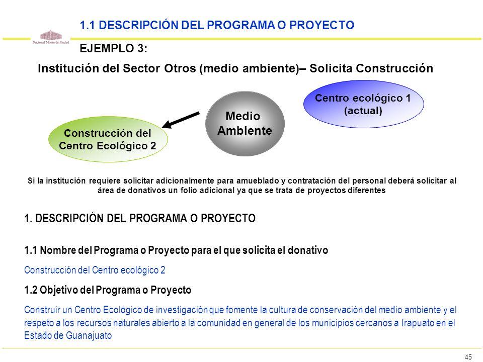 45 1.1 DESCRIPCIÓN DEL PROGRAMA O PROYECTO EJEMPLO 3: Institución del Sector Otros (medio ambiente)– Solicita Construcción Medio Ambiente Construcción