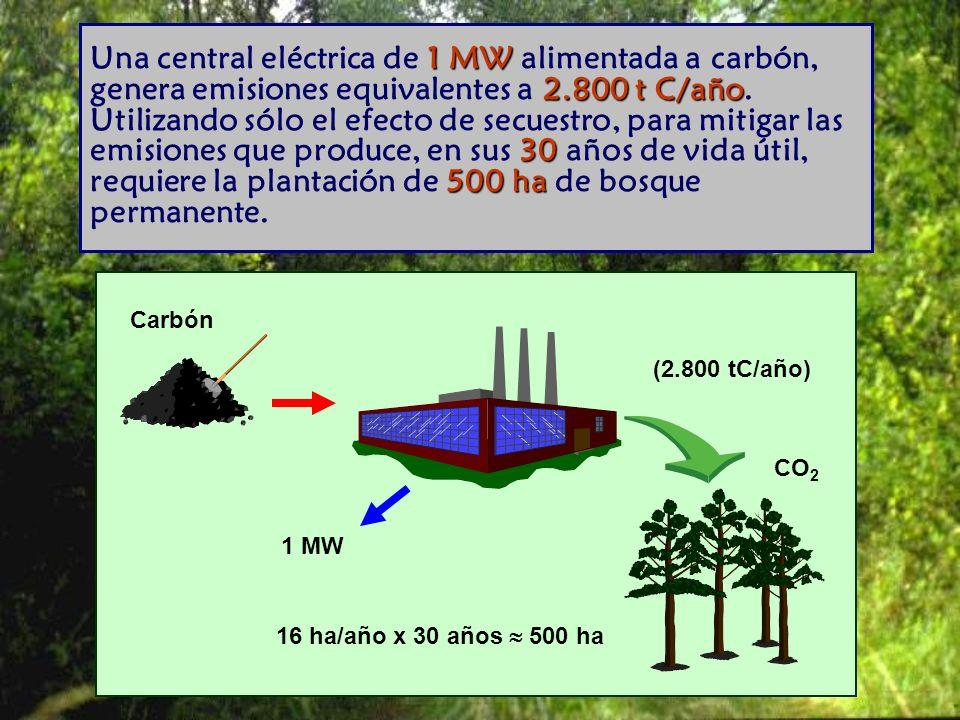 Carbón 1 MW (2.800 tC/año) CO 2 16 ha/año x 30 años 500 ha 1 MW 2.800 t C/año 30 500 ha Una central eléctrica de 1 MW alimentada a carbón, genera emisiones equivalentes a 2.800 t C/año.