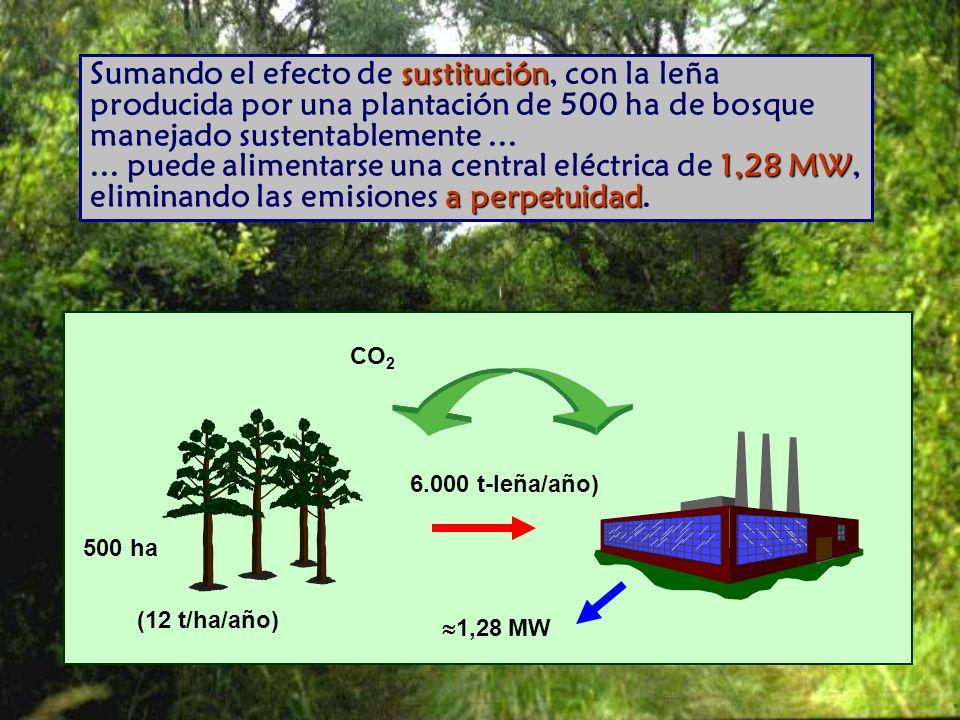 CO 2 500 ha (12 t/ha/año) 6.000 t-leña/año) 1,28 MW sustitución 1,28 MW a perpetuidad Sumando el efecto de sustitución, con la leña producida por una plantación de 500 ha de bosque manejado sustentablemente......