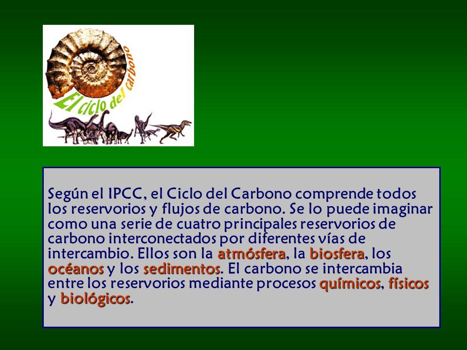 atmósferabiosfera océanos sedimentos químicosfísicos biológicos Según el IPCC, el Ciclo del Carbono comprende todos los reservorios y flujos de carbono.