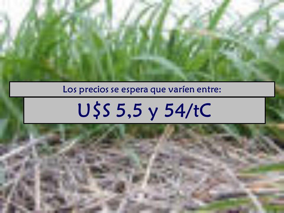 Los precios se espera que varíen entre: U$S 5,5 y 54/tC