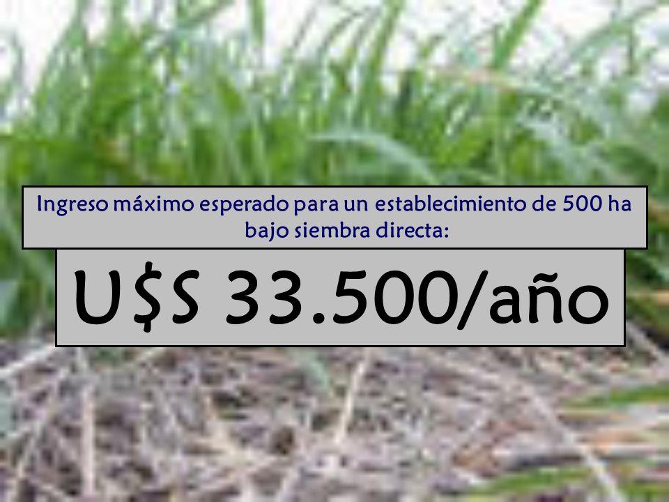 Ingreso máximo esperado para un establecimiento de 500 ha bajo siembra directa: U$S 33.500/año