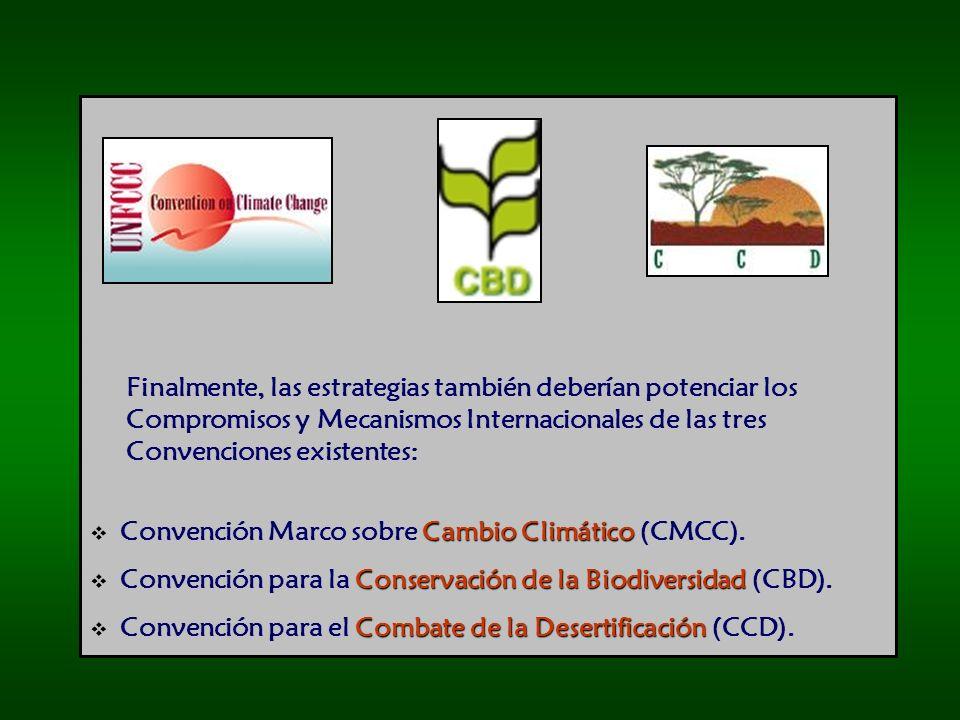 Finalmente, las estrategias también deberían potenciar los Compromisos y Mecanismos Internacionales de las tres Convenciones existentes: Cambio Climático Convención Marco sobre Cambio Climático (CMCC).