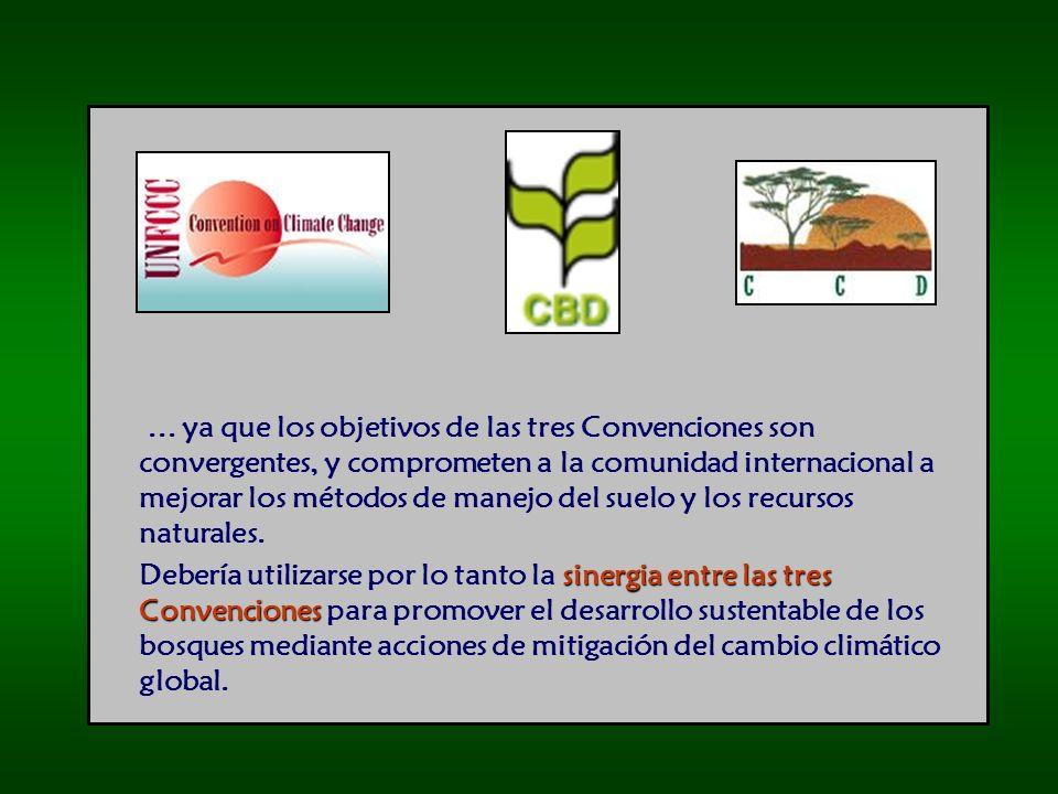 ... ya que los objetivos de las tres Convenciones son convergentes, y comprometen a la comunidad internacional a mejorar los métodos de manejo del sue