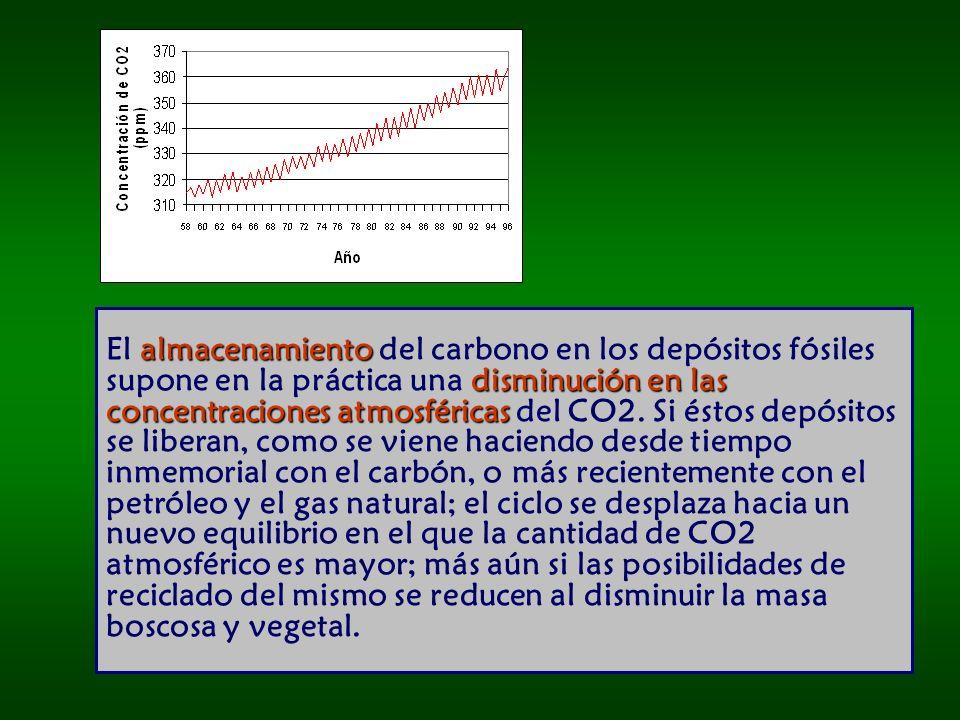 almacenamiento disminución en las concentraciones atmosféricas El almacenamiento del carbono en los depósitos fósiles supone en la práctica una disminución en las concentraciones atmosféricas del CO2.
